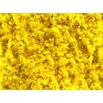 YELLOW GOLD SOFT EGGFOOD 25kg